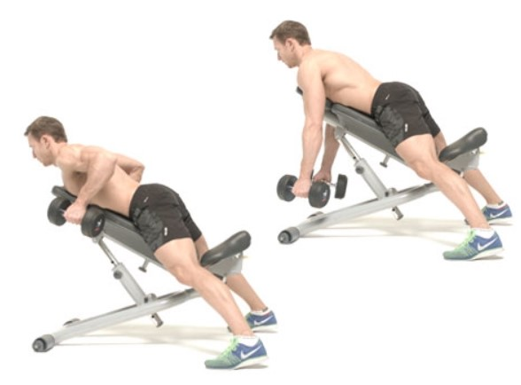 inclined dumbbell row